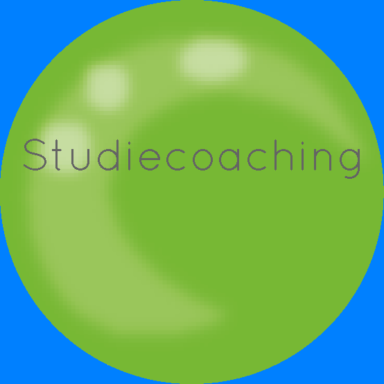 studiecoaching